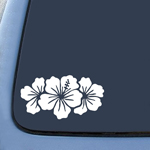 BargainMax Hibiscus Group Sticker Decal Notebook Car Laptop 6