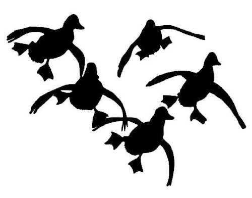 Locked up and committed duck decal white for Duck hunting mural
